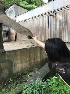宇都宮動物園④.jpg